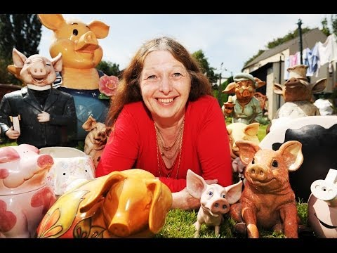 World's Biggest Model Pig Collection