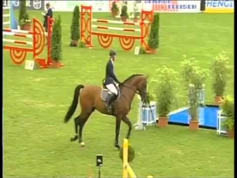 CANSTAKKO: Hannover jumping stallion by Canturo x Stakkato, www.equine-evolution.com