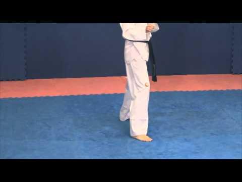 Taekwondo 360 Tornado Kick