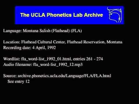 Flathead audio: fla_word-list_1992_12