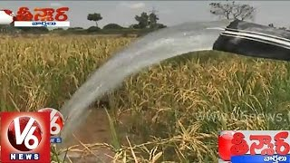 Farmers are happy by rains with the effect of Nilofer cyclone - Teenmaar News - V6NEWSTELUGU