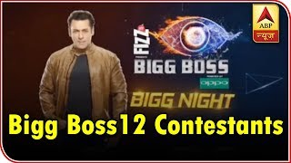 Bigg Boss 12: Know what your favorite contestant were up to before entering Bigg Boss hous - ABPNEWSTV