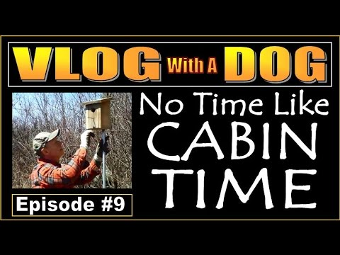VLOG WITH A DOG  Episode 9  No Time Like Cabin Time