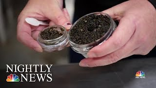 Where to find 'America's Best Caviar?' Try Kentucky. | NBC Nightly News - NBCNEWS