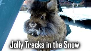 Royalty FreeBackground:Jolly Tracks in the Snow