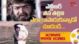 ఎన్టీఆర్ తన తల్లిని ఎలా కాపాడుకున్నారో చూడండి | Ultimate Movie Scenes | TeluguOne - TELUGUONE