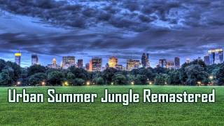 Royalty Free Urban Summer Jungle Remastered:Urban Summer Jungle Remastered