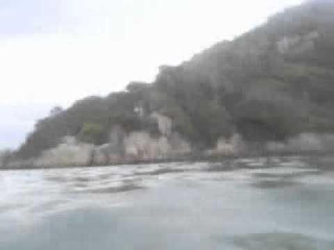 Ataque de Tubarão DUDI na Guarda do Embaú SC.