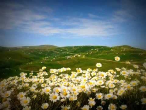 Erkan Oğur - Karşıda Görünen Ne Güzel Yayla