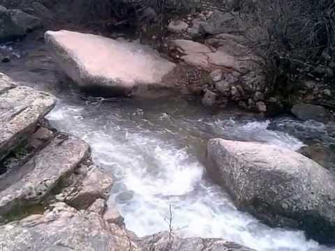 Naturaleza y su sonido la cascada