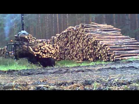 Zrywka drewna przyczepą Palms 700/142 + Ursus 1614