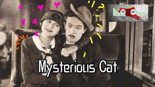 Royalty Free Mysterious Cat