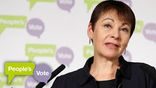 Caroline Lucas warns against No Deal Brexit - THESUNNEWSPAPER