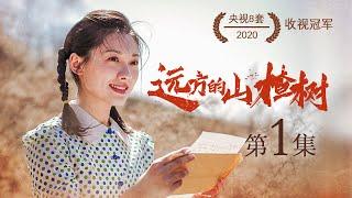远方的山楂树  (48集全)吴其江、马藜、林家川、孙爽