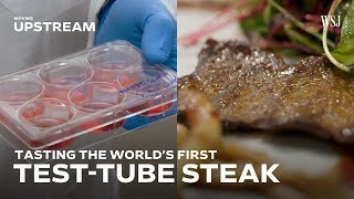 Tasting the World's First Test-Tube Steak - WSJDIGITALNETWORK