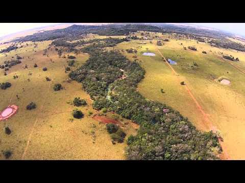 Filmagem aérea das matas ciliares do Rio da Prata próximo da ponte da Estrada do Curé na MS-178