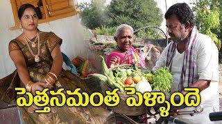 పెత్తనమంతా పెళ్ళాం దే  # 29 Pettanam Anta pellamde Telugu Comedy Shortfilm By Mana Palle Muchatlu - YOUTUBE