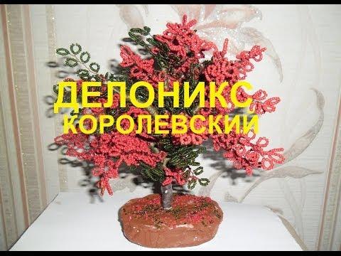 Мастер класс цветок Делоникс королевский из бисера, своими руками