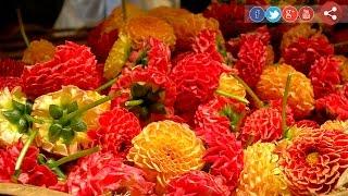 Oorum Unavum: Kanchipuram – Payasam 03-09-2016 Puthiya Thalaimurai TV Show