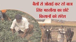 बैलों से जुताई कर रहे बाज सिंह महलिया का छोटे किसानों को संदेश