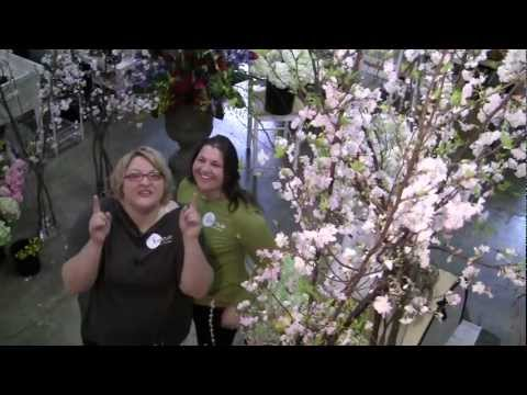 Fit to be Fab!  Show 4 -- Melissa is Back! Manzanita Branches and A Busy Work Week