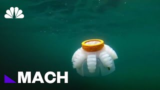 A Squishy Robot That Can Help Study Underwater Reefs | Mach | NBC News - NBCNEWS