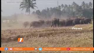 వీకోట అటవీ ప్రాంతంలో ఏనుగుల గుంపు, గ్రామాల వైపు రాకుండా అప్రమత్తమైన అటవీ సిబ్బంది | Chittoor | iNews - INEWS