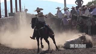 Coleaderos en Palo Gordo (El Plateado de Joaquín Amaro, Zacatecas)