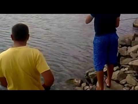 волчьи ворота форум рыбаков