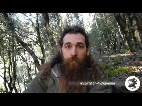 De la pensée naturiste à l'inspiration naturienne (4 sur 8): Le Poison dualiste