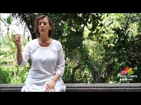 Ayurvedic cleanse or Ama reducing diet by Nora Coers Ayurveda