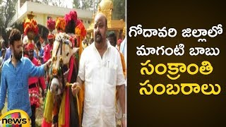 TDP MP Maganti Babu Sankranti Celebrations 2019 in Godavari District | Pongal | Mango News - MANGONEWS
