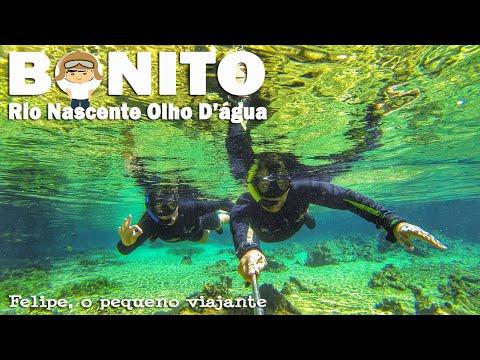 Felipe, o pequeno viajante - Flutuação no Rio Olho D'Água, Jardim - MS.