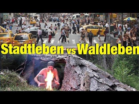 Stadtleben vs Waldleben