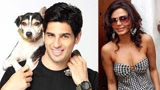Sidharth Malhotra, Rakhi Sawant, Salman Khan & others