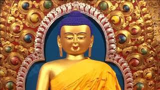 Dalai Lama contemplates Chinese gambit after his death - ANIINDIAFILE
