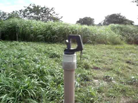 Dicas sobre Irrigação para Marcos Gabriel Ivcagropecuária.