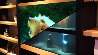 Прозрачный телевизор Panasonic: Это не фантастика