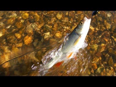 рыбалка на уфе хариуса