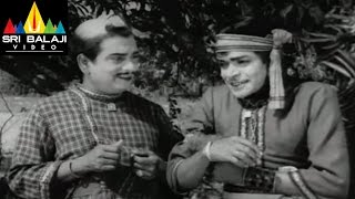 Alibaba 40 Dongalu Movie RajaBabu and Rama Prabha Marriage || NTR, Jaya Lalitha - SRIBALAJIMOVIES