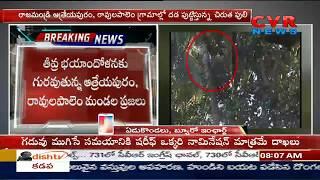 ఇంకా దొరకని గురజాడ పులి జాడ | Leopard Tiger is Still Missing | Atreyapuram | East Godavari | CVR - CVRNEWSOFFICIAL