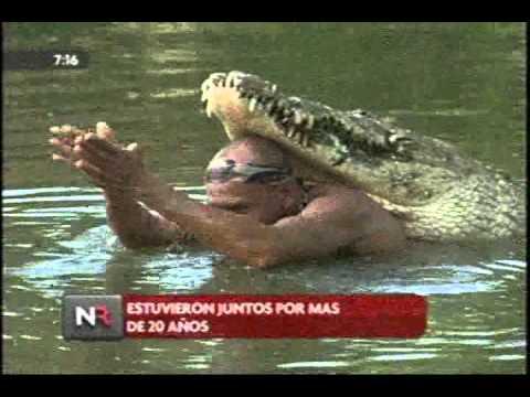 Murio el Lagarto Pocho - Cocodrilo crocodile Chito Costa Rica