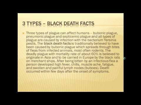 Black Death Facts