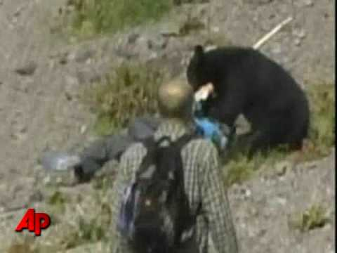Raw Video Bear Attacks Tourists in Japan