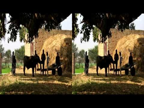 В ритме бхангры. 3D Iindia slideshow. Beat of Bhangra.