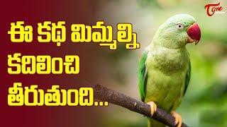 చిలక నుంచి ప్రతీ మనిషి నేర్చుకోవల్సినవి ఇవే.. Can we try to be as Loyal as this Parrot? | TeluguOne - TELUGUONE