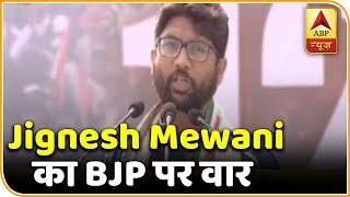 TMC Mega Rally: Country is going through an unprecedented crisis: Jignesh Mewani - ABPNEWSTV