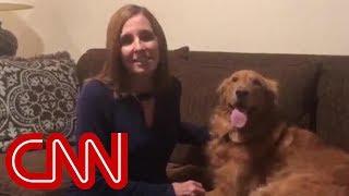 Dog steals show during concession speech video - CNN