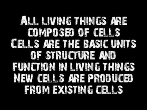 Cell Theory Rap -dgHN145_dj0