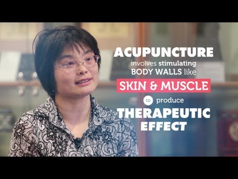 How does acupuncture work?   RMIT University